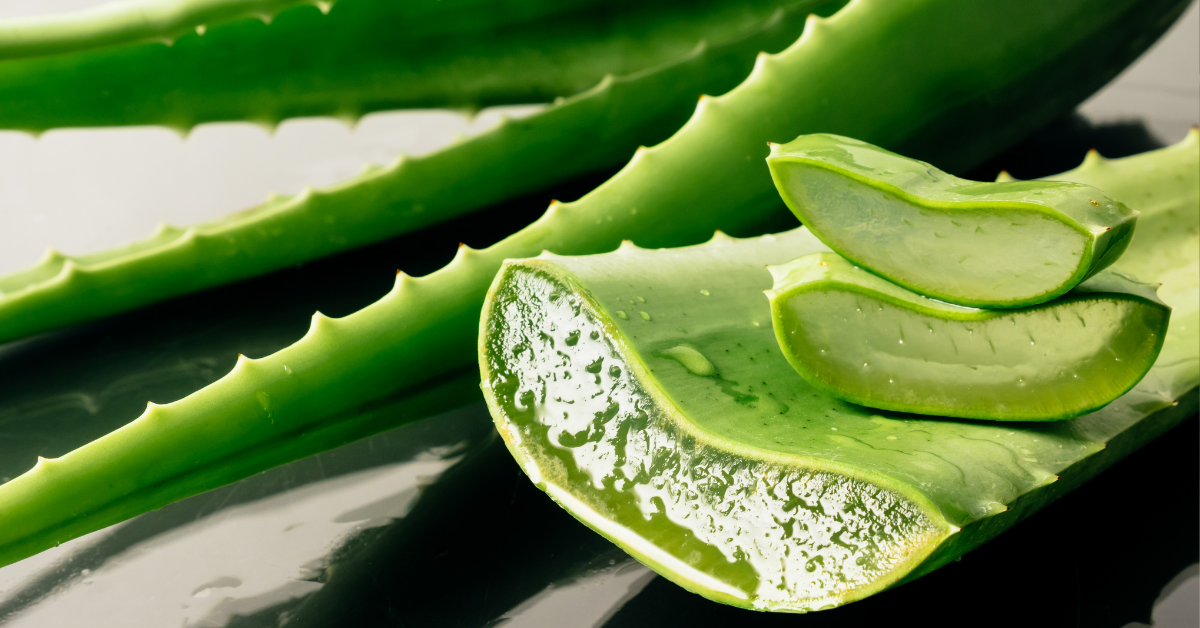 What are the health benefits of aloe vera?