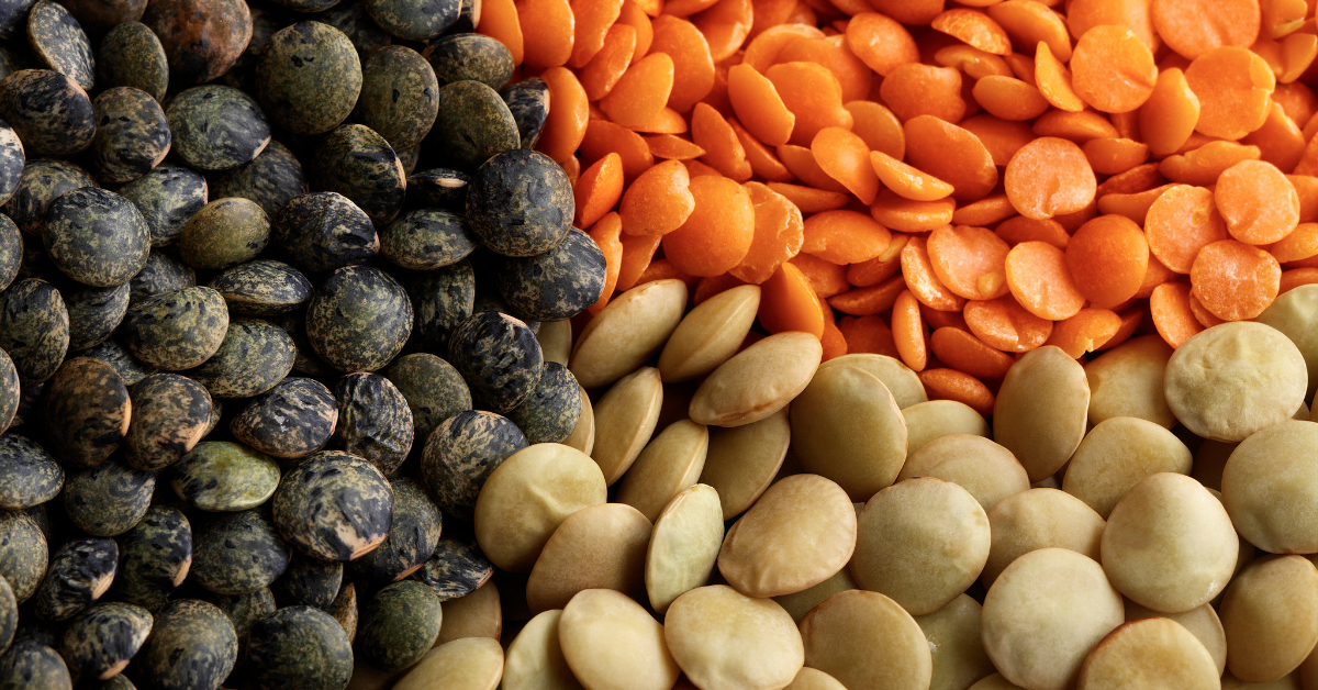 The Health Benefits of Lentils