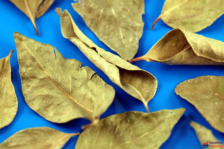 Trs Curry Leaves Dried 20g Healthysuppliescouk Buy Online