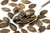 Organic Austrian Pumpkin Seeds 500g (Sussex Wholefoods)