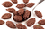 Dark Chocolate Pumpkin Seeds 150g (Sussex Wholefoods Gourmet)