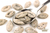 Gingerbread Pumpkin Seeds 150g (Sussex Wholefoods Gourmet)