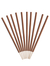 Citronella Incense Sticks 13g x 10 sticks (incognito)