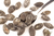 Pumpkin Seeds with Onion 150g (Sussex Wholefoods Gourmet)