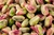 Pistachios, Organic 250g (Sussex Wholefoods)