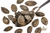 Lightly Salted Pumpkin Seeds 150g (Sussex Wholefoods Gourmet)