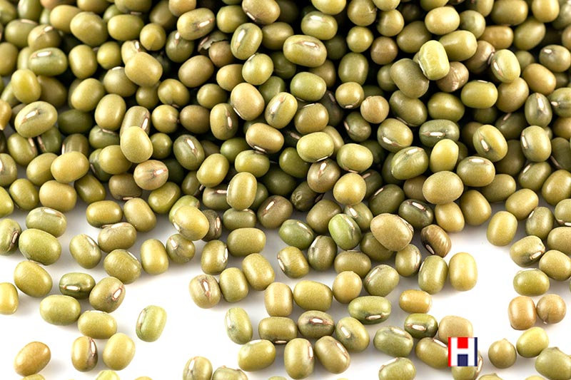 Mung Beans and Moong Dal - HealthySupplies co uk  Buy Online